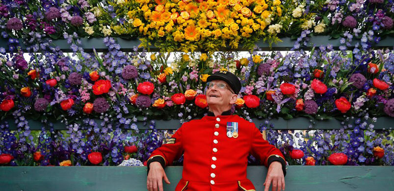 Chelsea Pensioner Enjoying Flower Display At Show