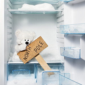 Polar Bear Toy In Refrigerator With North Pole Sign