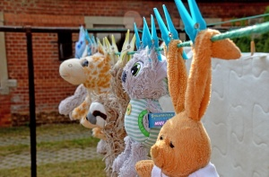 Cuddly toys on washing line