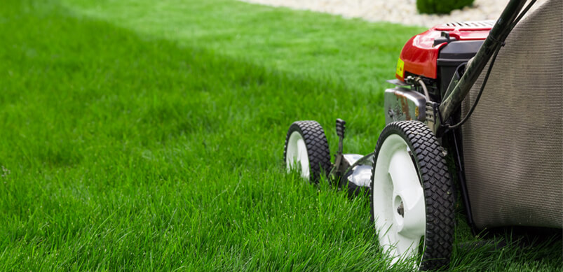 Close Up On Lawnmower On Grass