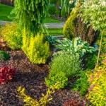 Inspirational gardening accounts you should be following