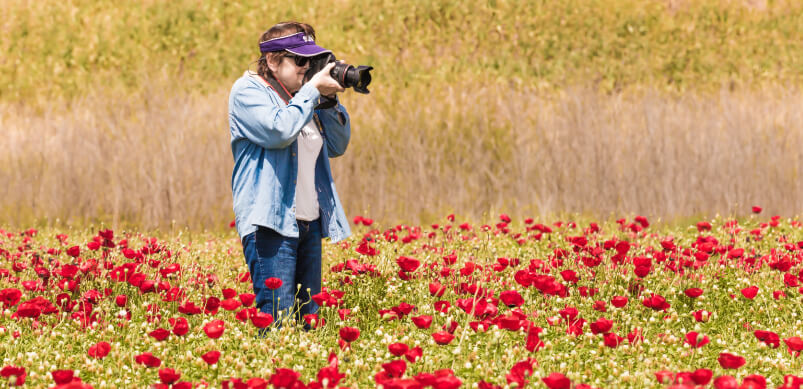 Woman Photographing Wildflower