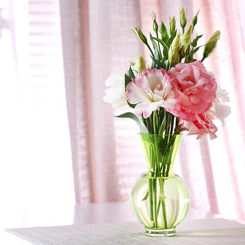 Pink Flowers In Window