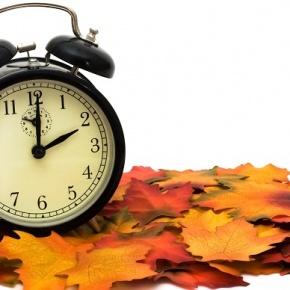 Black Alarm Clock On Fall Leaves