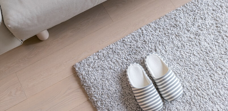 Cosy Slippers on Carpet