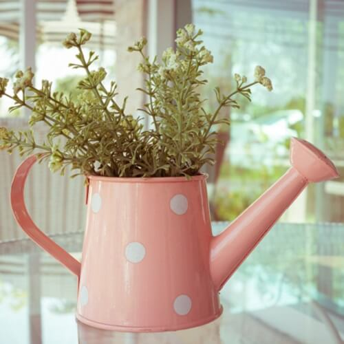 Upcycled Watering Can Into Plant Pot