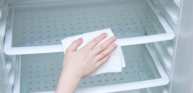 Hand Cleaning Fridge Shelves