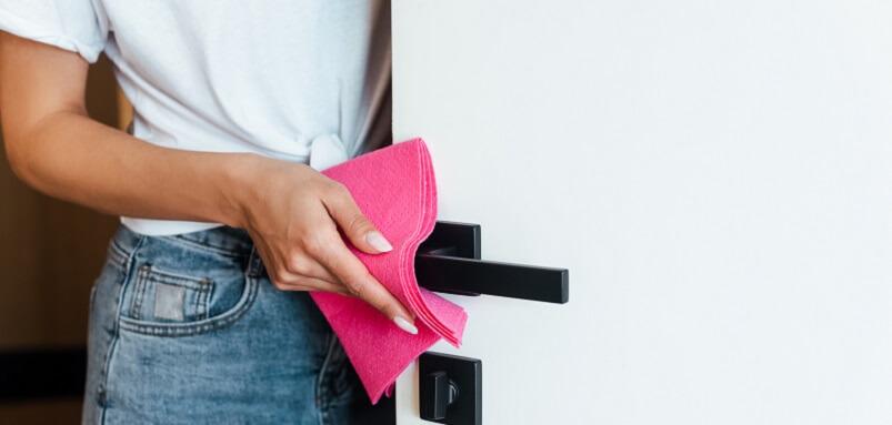 Person Cleaning Door Handles