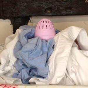Ecoegg on Laundry