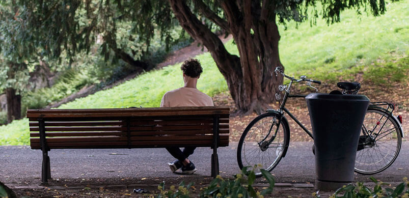 Man on Park Bench
