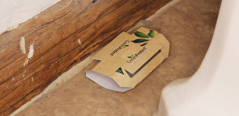 Green Protect Crawling Insect Trap On Floor