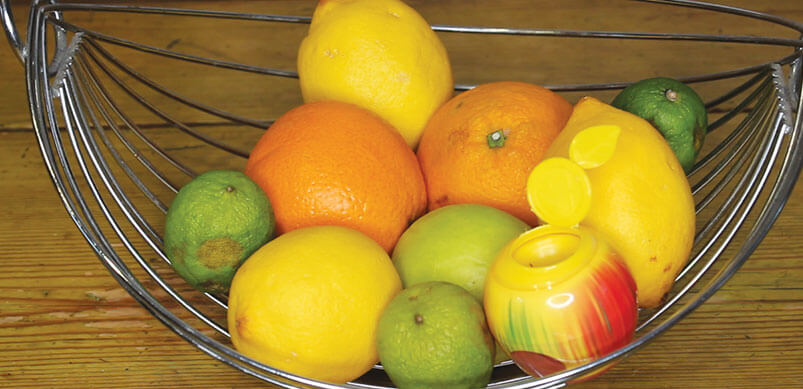 Green Protect Fruit Fly Trap In Fruit Bowl