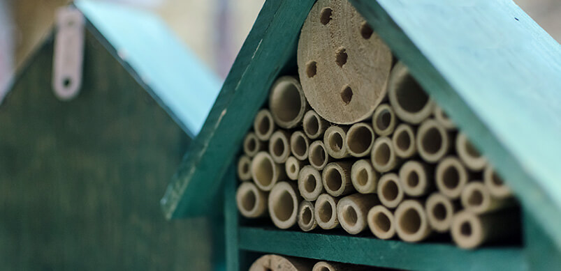 Insect And Bee Hotel
