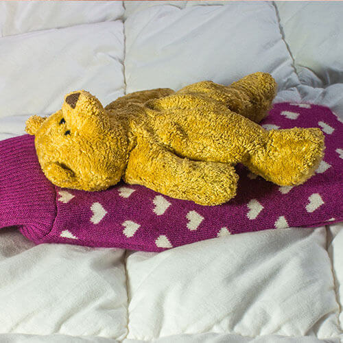 Teddy Bear and Hot Water Bottle