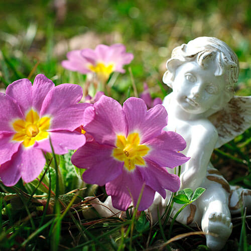 Statue And Flowers In Garden
