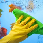 Household Cleaning Essentials for Autumn